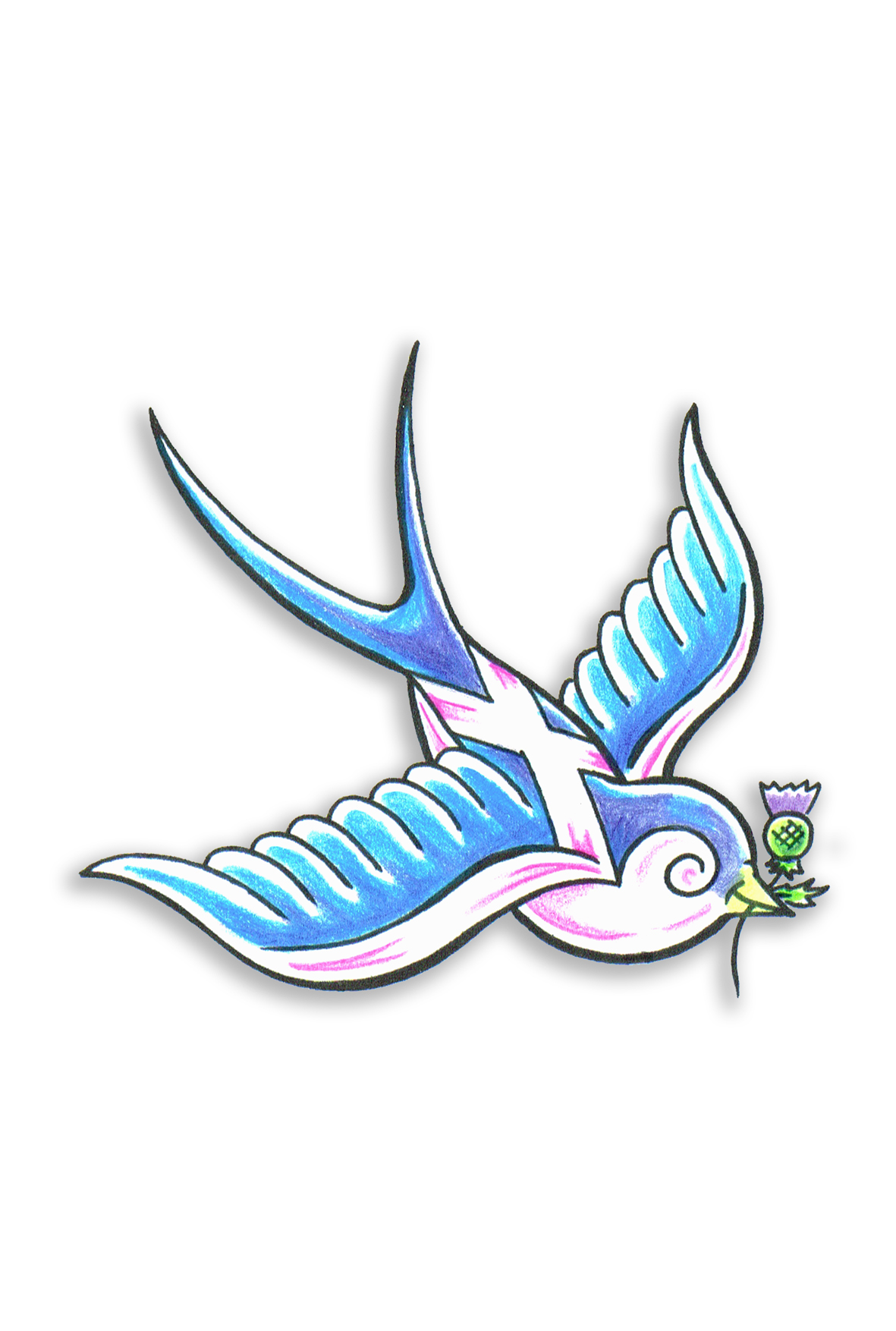 Scottish Swallow
